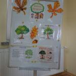 Tablica z okazji dnia drzewa