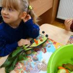 przedszkolaki samodzielnie przygotowały warzywno-owocowe cudaczki