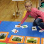 dopasowywanie jesiennych obrazków