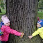 Przedszkolaki przytulają drzewo