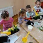 sadzimy wiosenne kwiatki