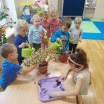 Dzieci dbają o rośliny