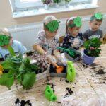 sadzimy rośliny